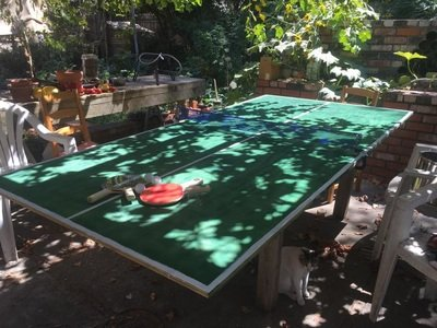 DIY Ping-Pong Table Under $100