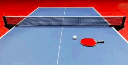 Inexpensive DIY Ping-Pong Table Idea