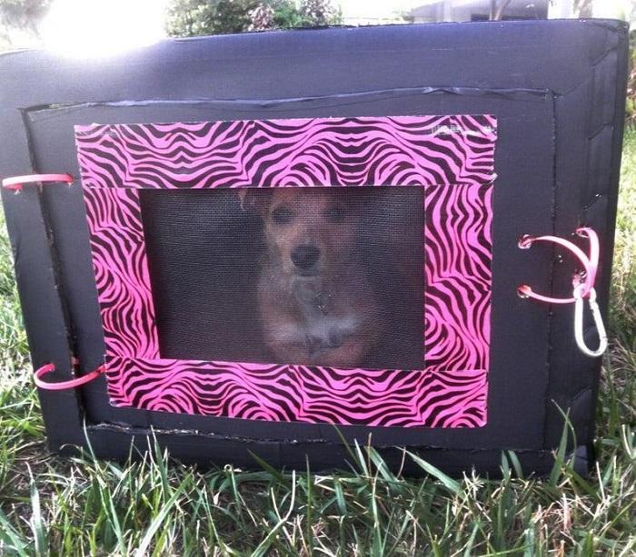 DIY Cardboard Dog Crate