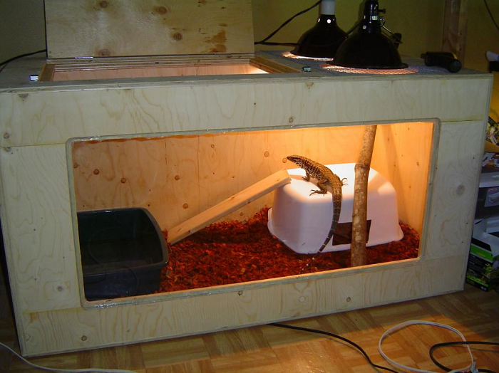 DIY Indoor Tegu Enclosure