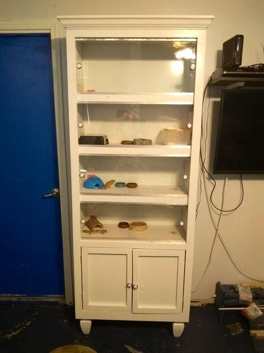 DIY Reptile Enclosure Made Out of an Upcycled Bookcase