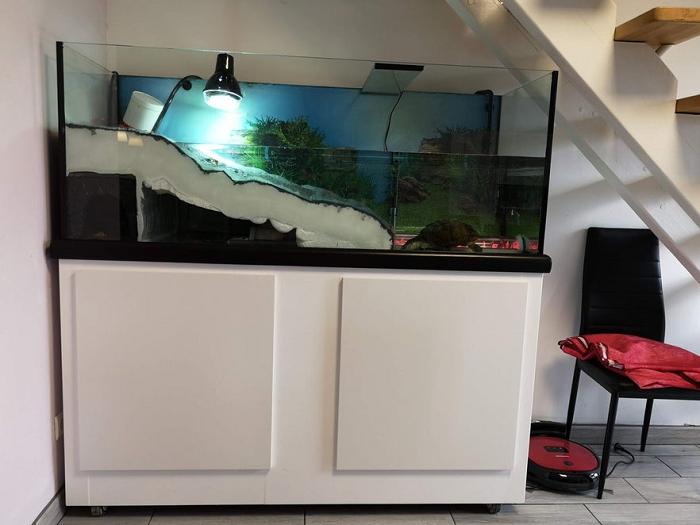 DIY Turtle Tank With Underwater Tunnel