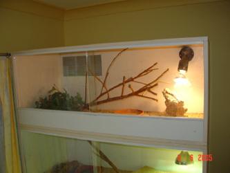 Simple DIY Reptile Enclosure Plan