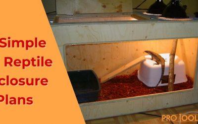 13 Simple DIY Reptile Enclosure Plans