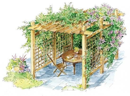 DIY Pergola for Vines