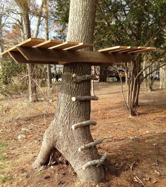 DIY Platform Treehouse
