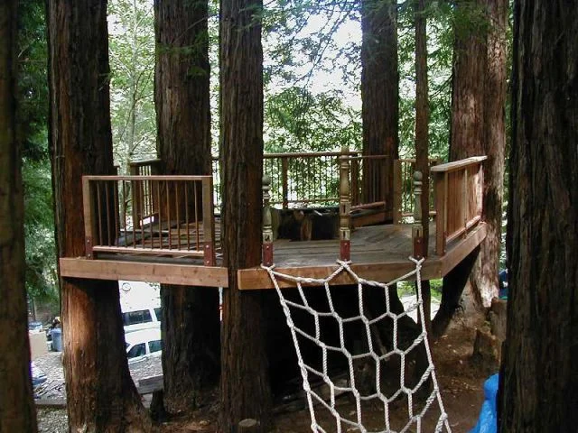 DIY Treehouse Built On A Group of Trees